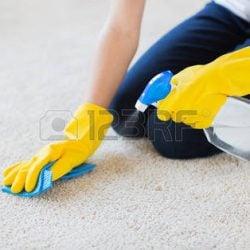 38663114-insanlar,-ev-işleri-ve-temizlik-kavramı---yakın-evde-bez-ve-deterjan-püskürtme-temizleme-halı-lastik